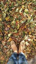 Осенние потрясающей красоты листья...