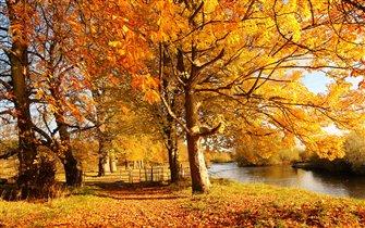 Осенняя Сызрань