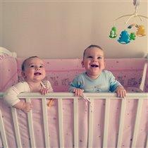зубастые двойняшки