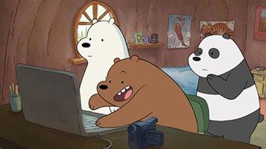 «Вся правда о медведях»  - новый мультсериал на  Cartoon Network