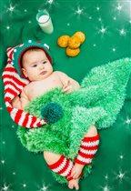 Алиса и её гостинцы для Дедушки Мороза)