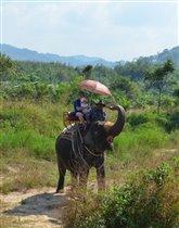 Маруся с папой на слоне