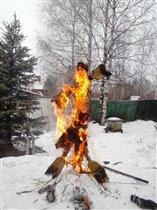 Огненная царевна-лебедь