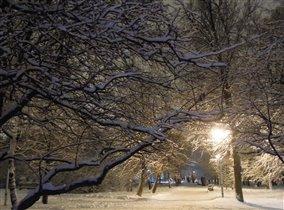 Москва, последний снегопад.....