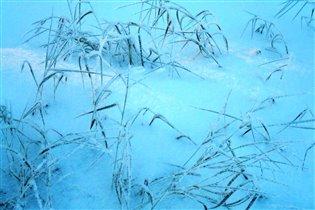 'Зимние сумерки'