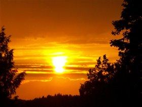 Застенчивое солнце в  час вечерний...