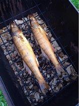 Рыба в коптильне))