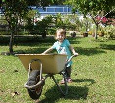 Маму очень я люблю и в саду ей помогу