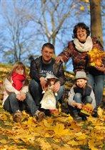 золотая осень дарит прекрасное настроение