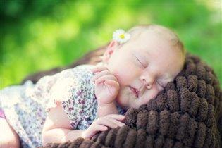 Сладкий полуденный сон
