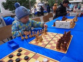 Юный шахматист