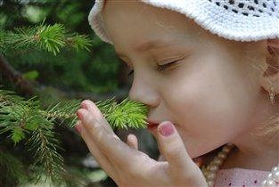 Волшебные ароматы лета