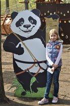 Подружка панды