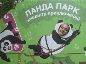 Верёвочный Парк в Сокольниках. За активный отдых!!