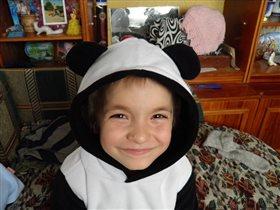 Наш маленький панда