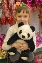 любимый панда