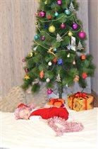 Долгожданный подарок от Деда Мороза