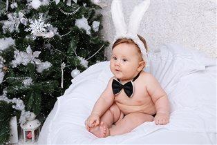 Любимый заяц))