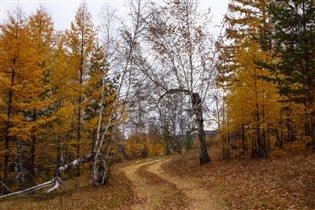 Ворота в осень