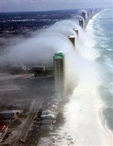 Туман Флорида