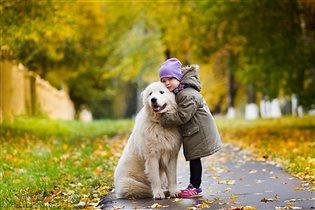 любимый пес