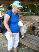 Ласковый козленок) Стреза, Италия.