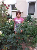 Загнали в розы фотографироваться