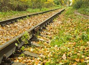 Осенний путь.