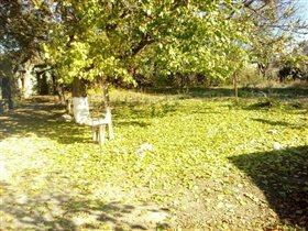 Осенний двор.