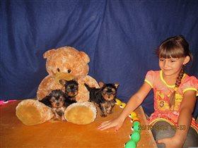 С любимыми щенками