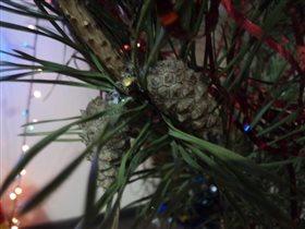 шишки на новогодней елочке