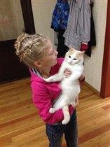 Котик коток