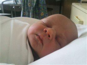 1сутки после рождения
