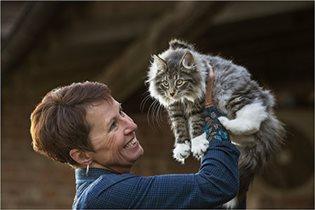 Новинка - ошейник для кошек с репеллентным эффектом