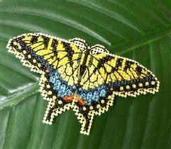 Бабочка Милл-Хилл