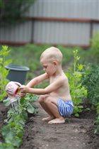 Помощник по огороду!