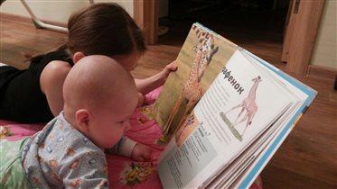 энциклопедия о животных для больших и маленьких