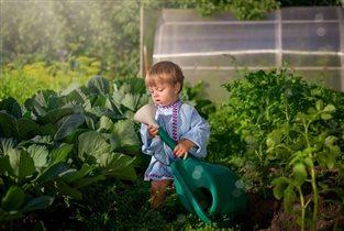 Матвей, юный садовод-огородник
