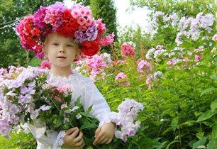 Цветочный оазис
