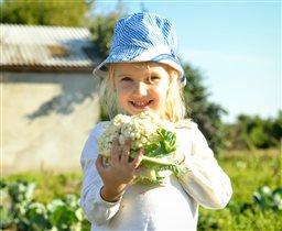 Сборы урожая - дело важное!