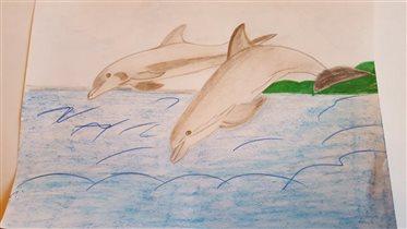 Посетить дельфинарий в Батуми моя мечта! )
