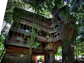 Самые необычные в мире дома на деревьях
