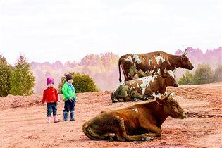 Главные пастушки на выгуле коров на даче