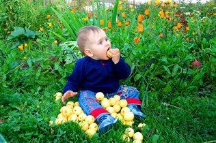 Дачные витаминчики - самые вкусные!