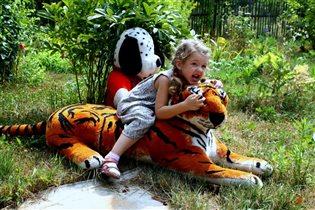 На даче завелись дикие тигры...обязаны укротить