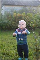 Конец кустику или Тимон - гроза огородов