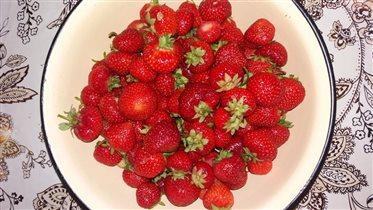 Отборная ягодка