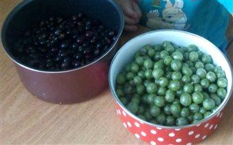 Каждая ягодка -Благодать)))