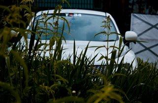 Nissan Juke крадется