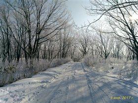 Зимняя дорога'